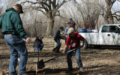 Eagle Scout Tree Planting