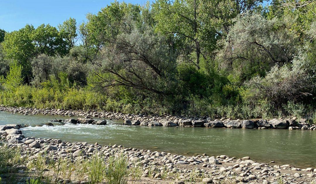 River Cross-Vanes